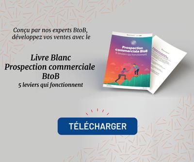 Agence Nova Contenu Livre Blanc 2